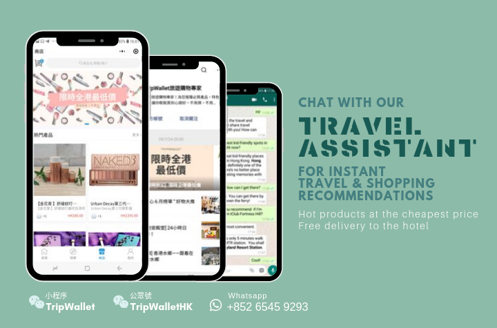 TripWallet - Your Travel Assistant